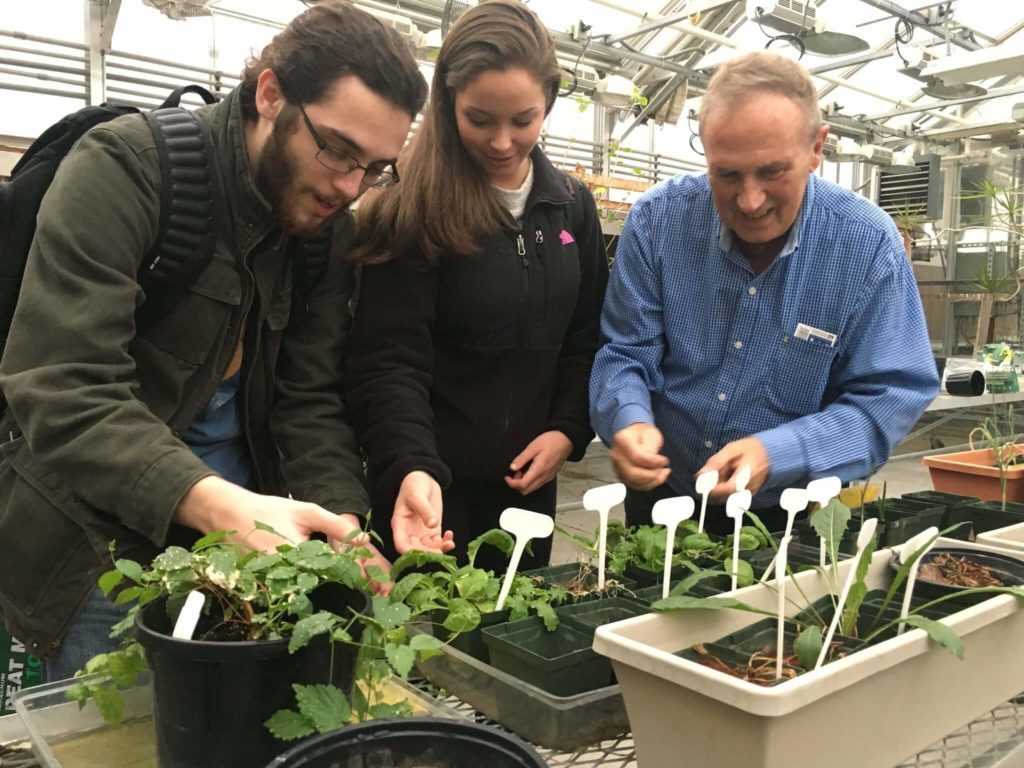 Beer on Mars: Students Find Red Planet Could Grow Hops 91