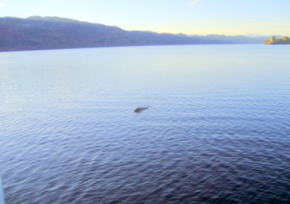 New Loch Ness Monster photo surfaces 19