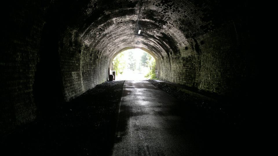 Psychology and NDEs - Light at the end of the tunnel? 14