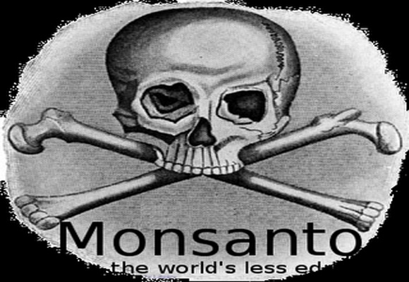 The Video Monsanto Does Not Want You To See 86