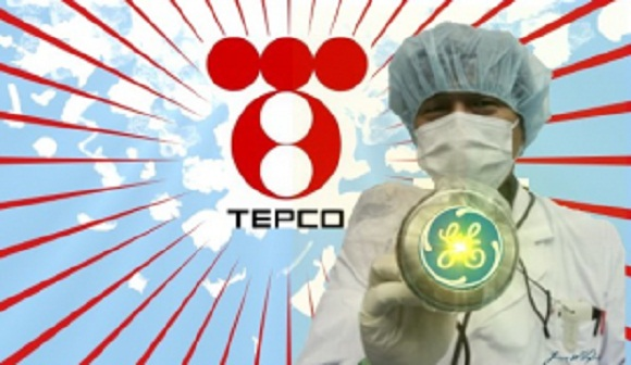 Former Fukushima Worker Sues TEPCO for Downplaying Radiation Dangers 12
