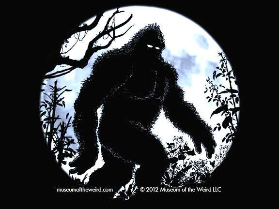 'Bigfoot' DNA Sequenced In Upcoming Genetics Study 1