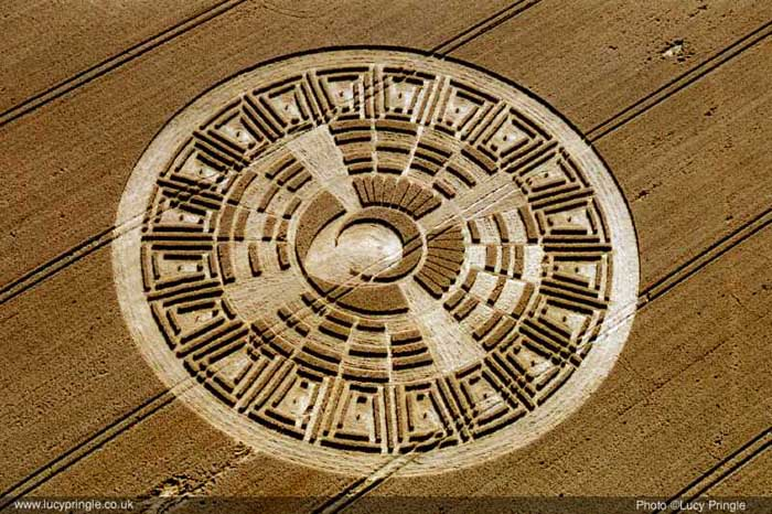 Crop Circle Language - Russian Cosmonaut Backed By 50 Other Scientists Crack Crop Circle Code  112