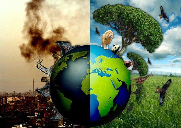 Ecocide: The Push to Criminalize Humanity For the Sake of Saving the Planet 43