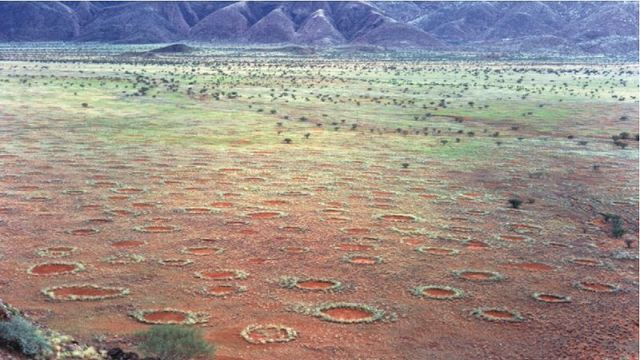 The mysterious fairy circles of Namibia 1