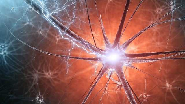 Scientists offer quantum theory of soul's existence  86