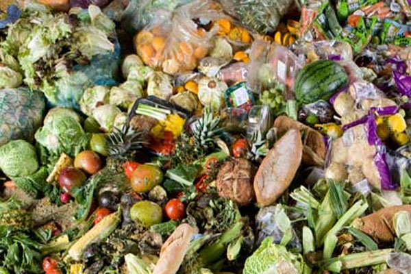 Almost half of the world's food thrown away, report finds 99