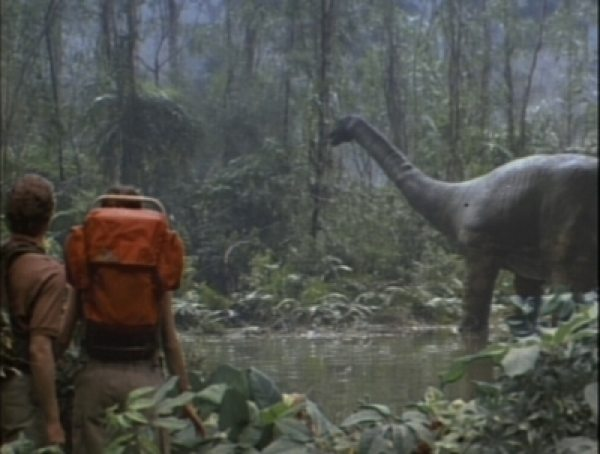 Living Dinosaurs In Wikileaks Video And The Likouala Swamp In The Congo 10