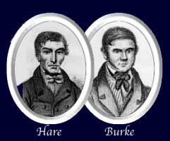 Hare_and_Burke