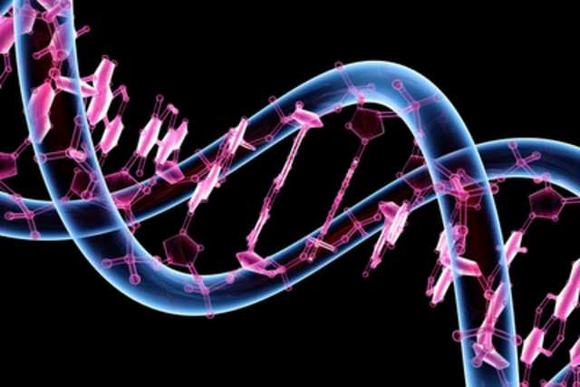 Russian researchers: The human 'Junk-DNA' is a biological Internet 104