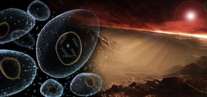 Life on earth 'began on Mars' 5