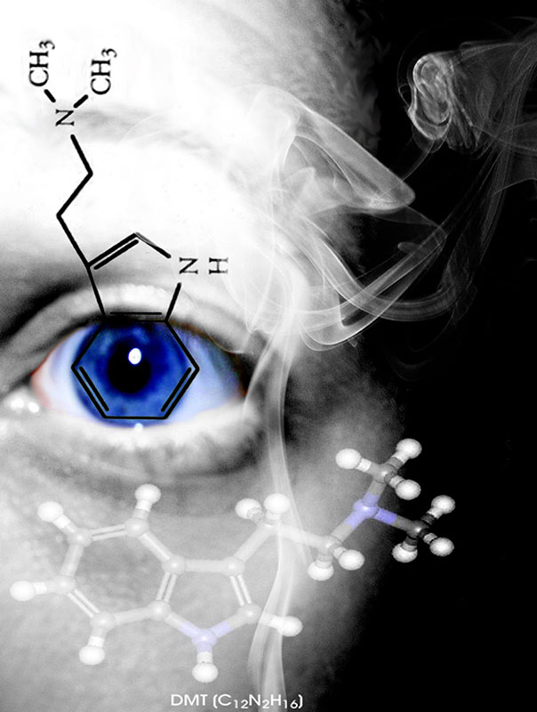 The Spirit Molecule 99
