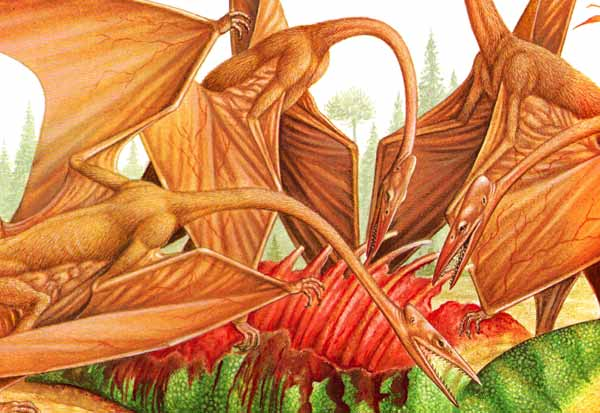 Quetzalcoatlus: the evil, pin-headed, toothy nightmare monster that wants to eat your soul 15