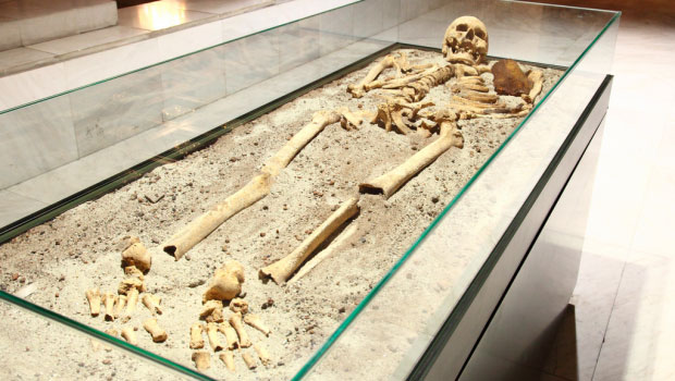 Big Buried Secrets: Giant Skeletons and the Smithsonian 1