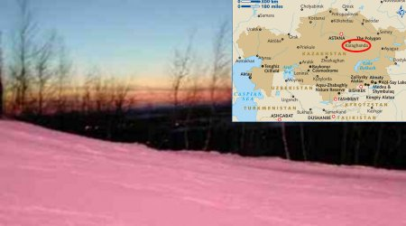 Pink Snow Surprises Residents In Karaghanda 22