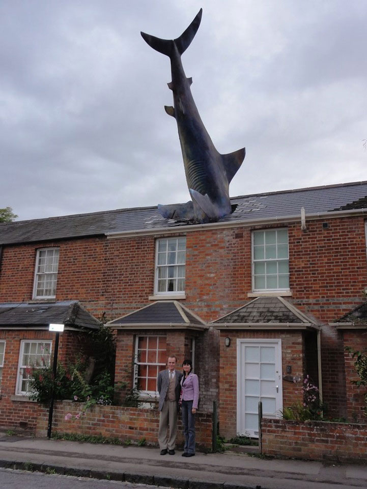 'Sharknado' Got One Thing Right: Aquatic Animals Sometimes Do Fall From the Sky 3