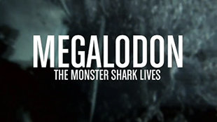 tile13-16x9-DISCOVERY-MegalodonTheMonsterSharkLives-jpg_213300