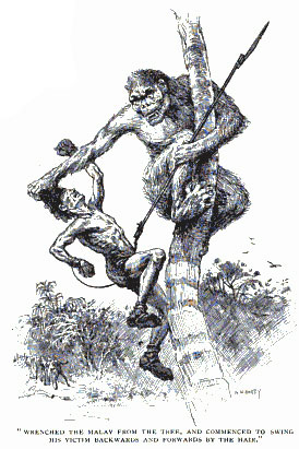 """""""The Hunt of the Man-Monkey"""": cryptozoology from 1901 1"""