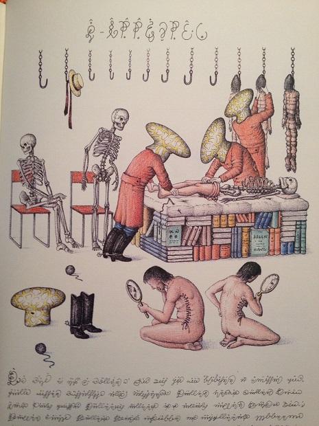 Codex Seraphinianus: A new edition of the strangest book in the world 18