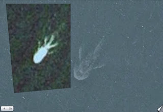 Another Strange Satellite Image 19