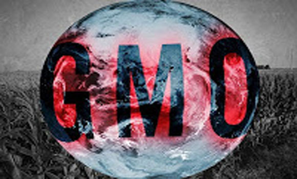 From Zyklon B to GM corn: How GMOs transformed food into a globalist weapon 94