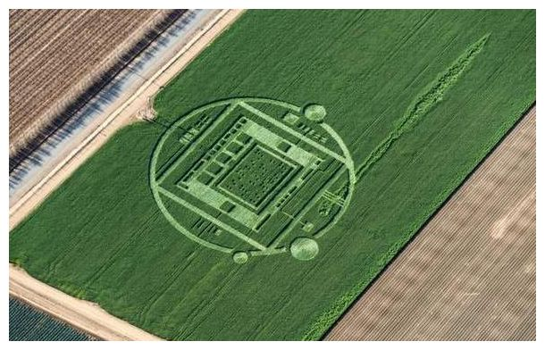 Elaborate crop circle discovered on Californian farm 20