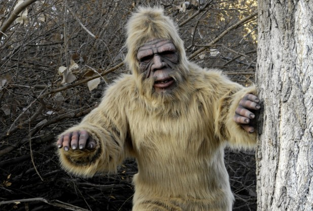 New Bigfoot reality TV series launches 1