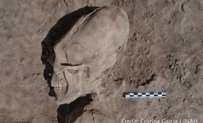 The 13 Alien-Like Skulls Found in Mexico 89