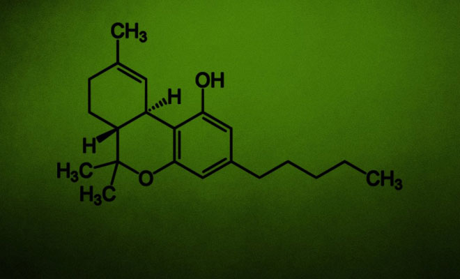 Scientist Explains How THC Kills Cancer Cells 1