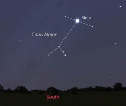 Sirius, nicknamed the Dog Star is the brightest star in Canis Major and brightest in the night sky. This map show Sirius about 1/3 of the way up in the southern sky during late twilight this month. Stellarium