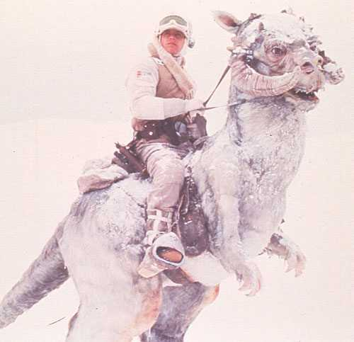 Star Wars VII 'will return to ice planet Hoth' 1