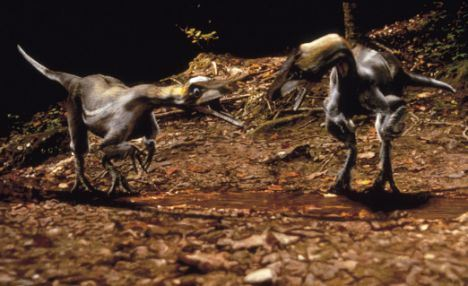 Television programme : When Dinosaurs Roamed. Using state of the