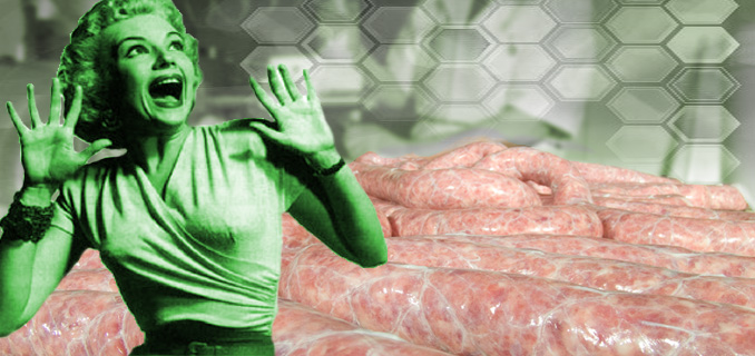 """""""It's made out of people!"""" Making meat from celebrity tissue samples 37"""