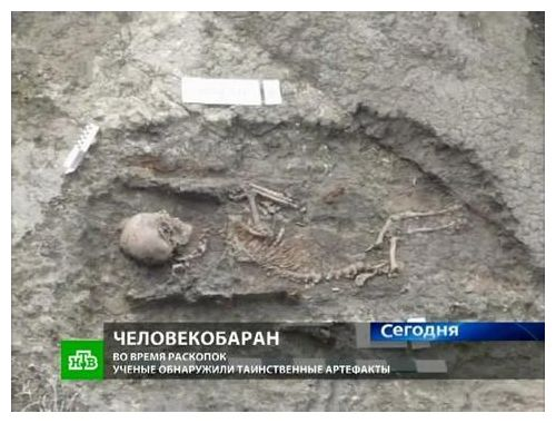Bizarre skeletons unearthed in Russian mound, satyr and giant horse 1