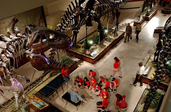 Weird 'chicken from hell' dinosaur lived alongside T. rex 21