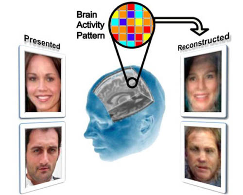 We Know What You're Thinking: Scientists Find a Way to Read Minds 7
