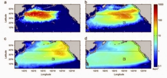 Japan Begins Purposely Dumping 100s Of Tons Of Radioactive Water From Fukushima Into The Pacific 7