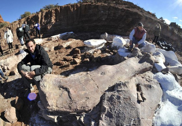 'World's largest dinosaur' discovered in Argentina 96