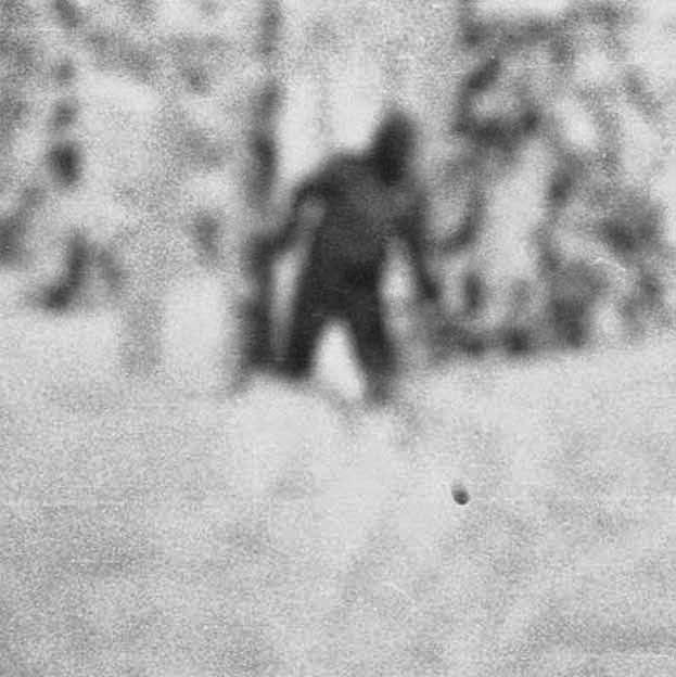 Alaska Sasquatch Encounters 24