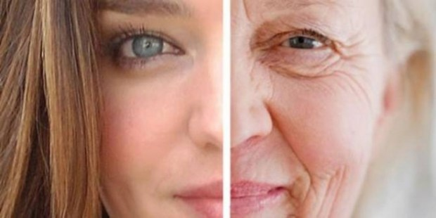 'Elixir of Youth' Found? New Experimental Drug Reverses Aging  1