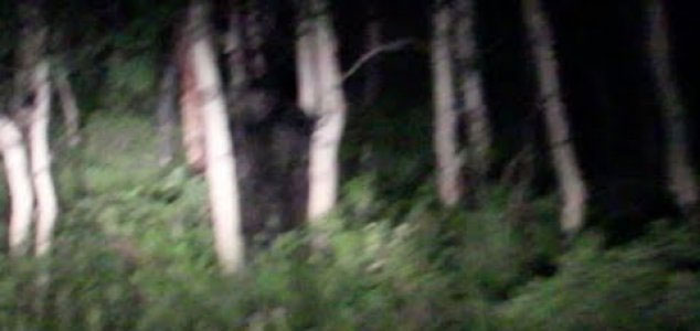 Couple encounter 'Bigfoot' on road at night 95