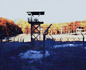 Will You Survive Being Sent To A FEMA Camp? 4