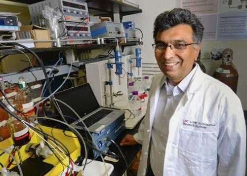 Scientists create new battery that's cheap, clean, rechargeable... and organic 34