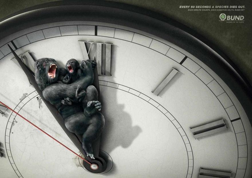 public-social-ads-animals-5
