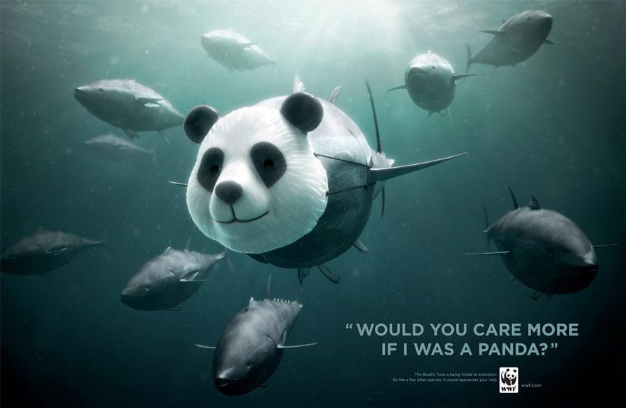 public-social-ads-animals-52