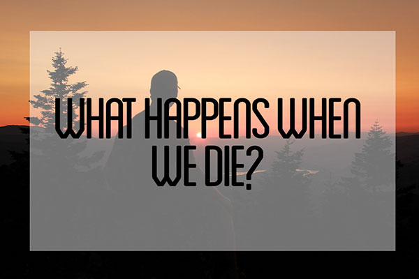 What Happens When You Die: The Afterlife Revealed Through Near Death Experiences:  1