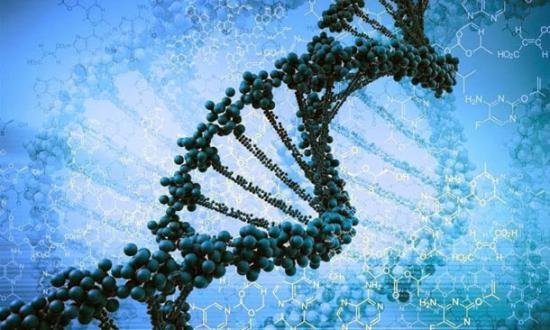 Our Alien DNA 86