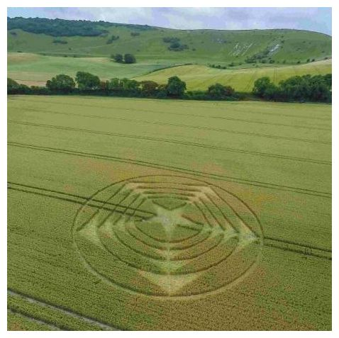 Enthusiasts flocked to see a mysterious crop circle in South England 18