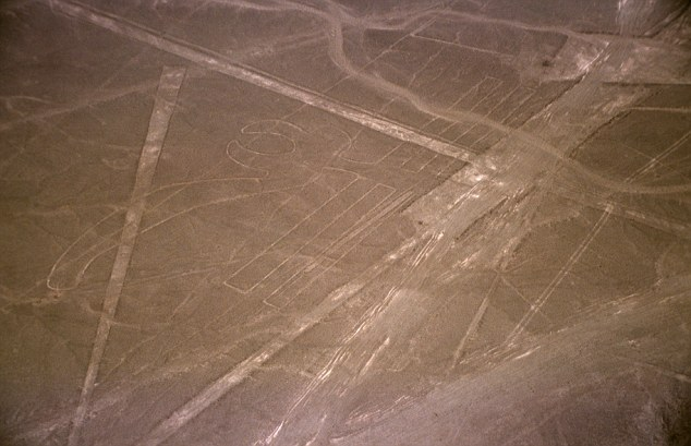 In general terms, the geoglyphs fall into two categories: the first group, of which about 70 have been identified, are said to represent natural objects, such as animals, birds and insects. Many of the images also appeared on pottery and textiles of the region. Other drawings represent flowers, plants, and trees