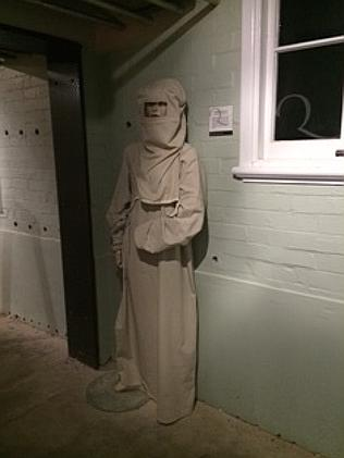 A mannequins dressed in disease-fighting costume.